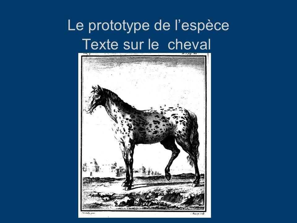 Le prototype de l'espèce Texte sur le cheval HN, Tome IV, 1753