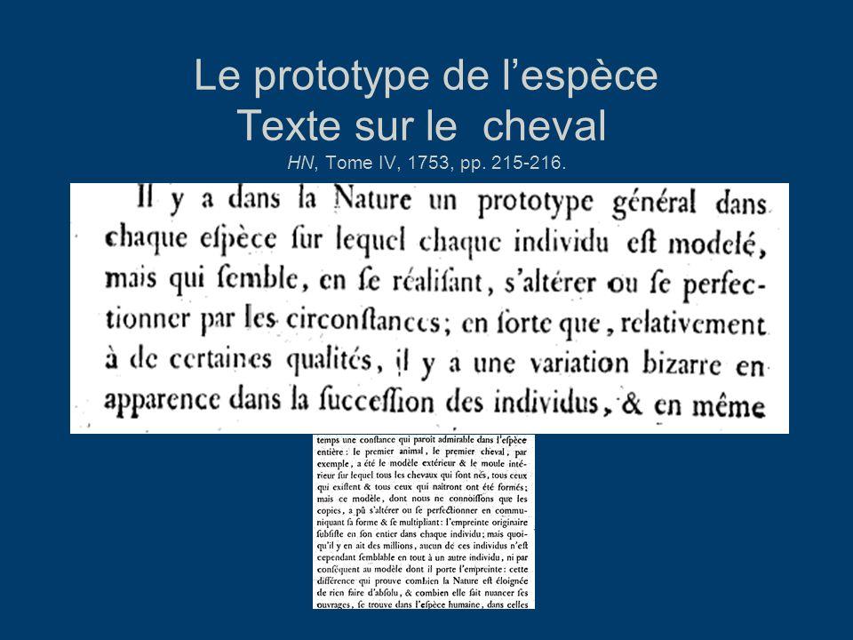 Le prototype de l'espèce Texte sur le cheval HN, Tome IV, 1753, pp