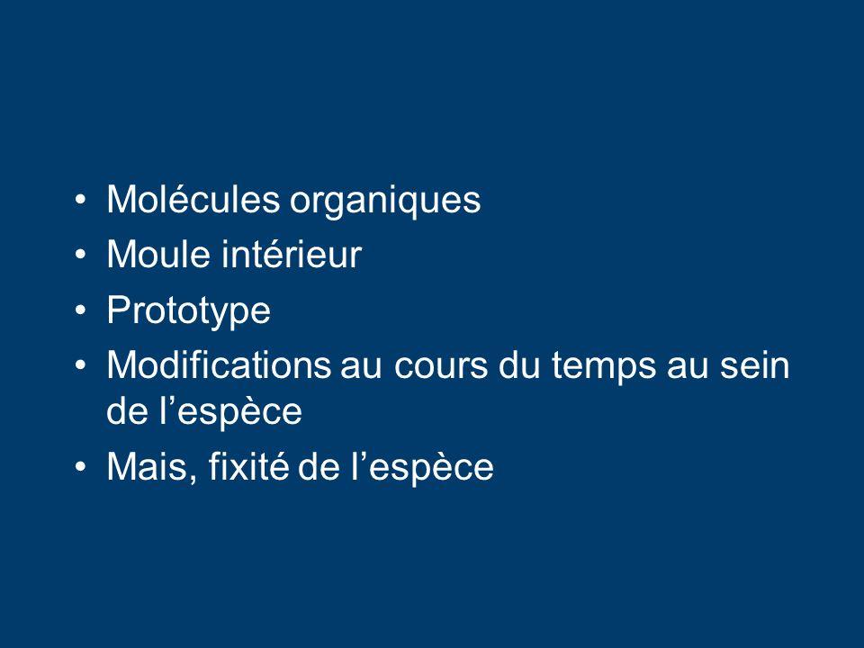 Molécules organiques Moule intérieur. Prototype. Modifications au cours du temps au sein de l'espèce.