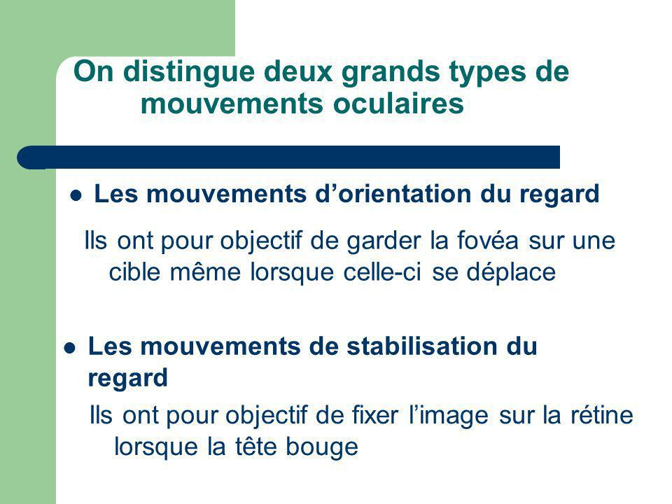 On distingue deux grands types de mouvements oculaires