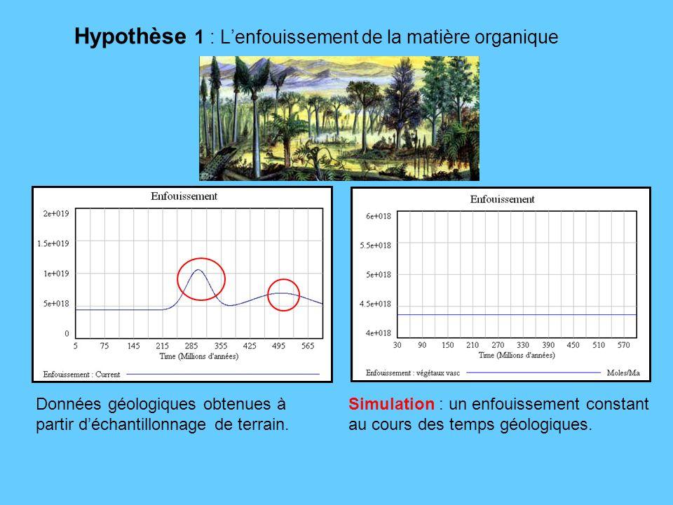 Hypothèse 1 : L'enfouissement de la matière organique