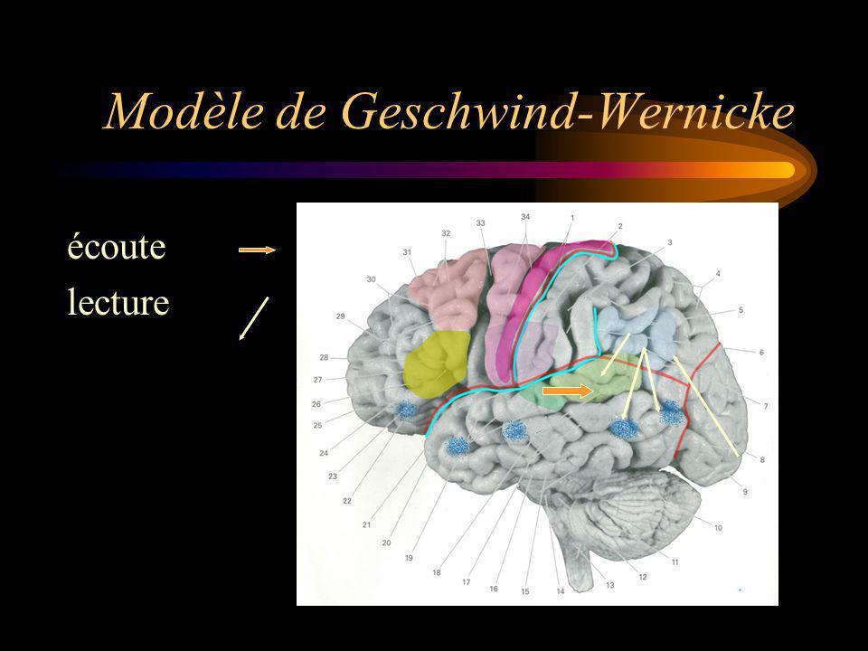Modèle de Geschwind-Wernicke