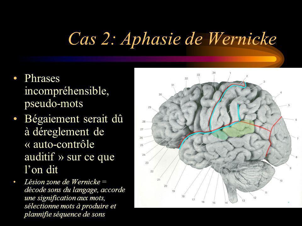 Cas 2: Aphasie de Wernicke