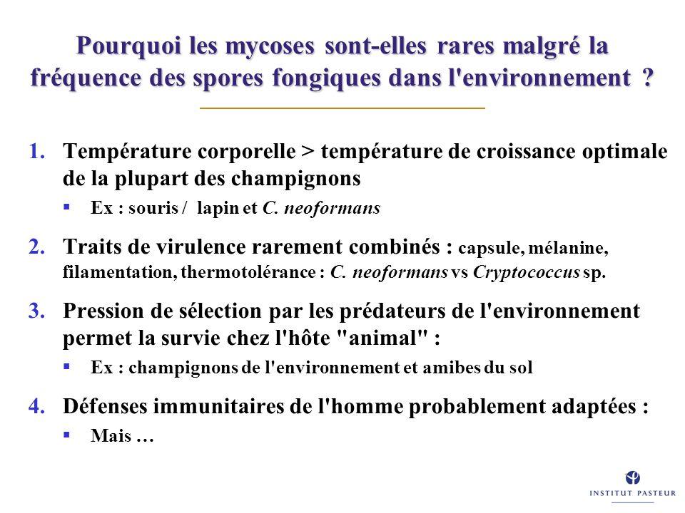 Pourquoi les mycoses sont-elles rares malgré la fréquence des spores fongiques dans l environnement