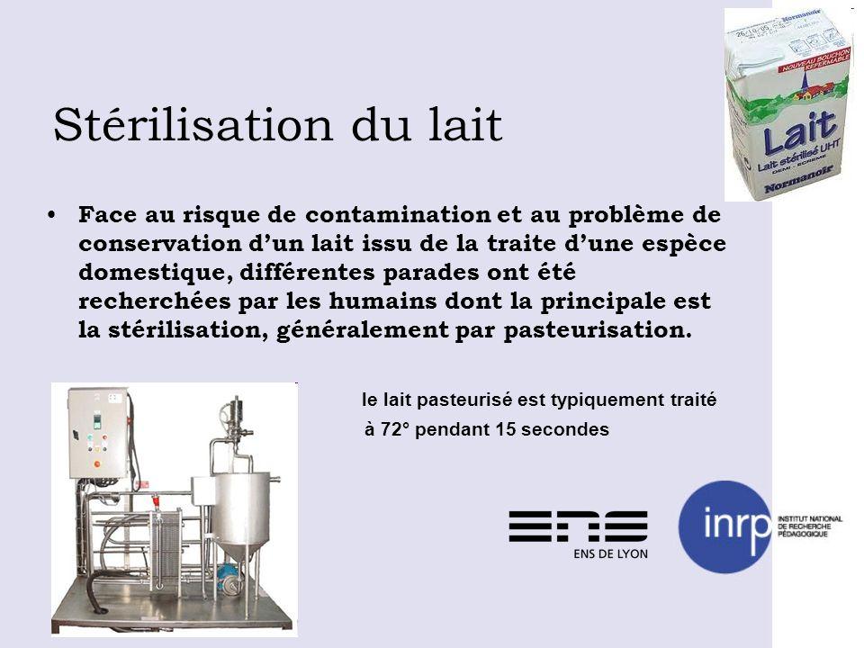 Stérilisation du lait