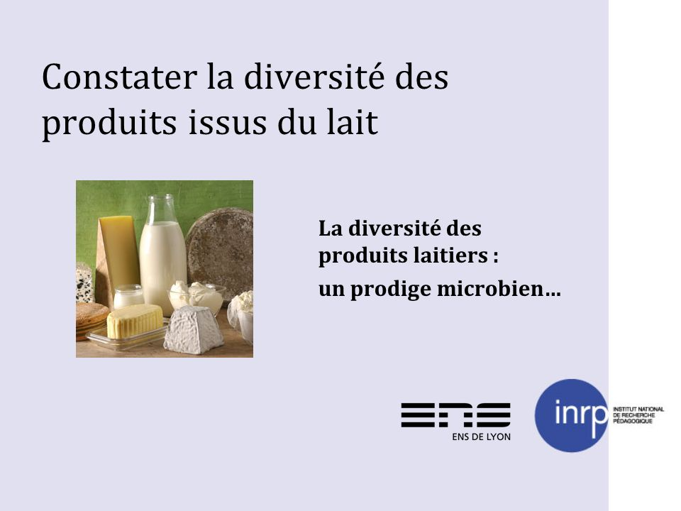Constater la diversité des produits issus du lait