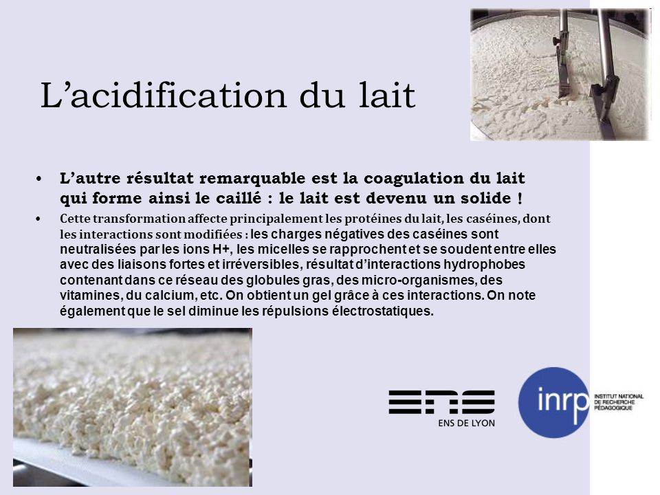 L'acidification du lait