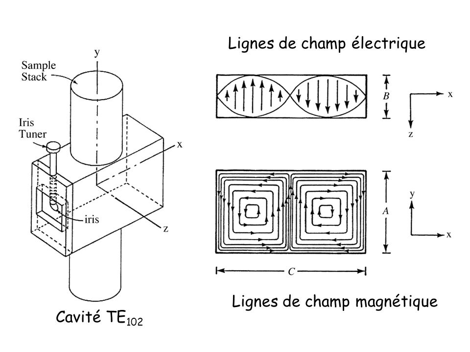Lignes de champ électrique