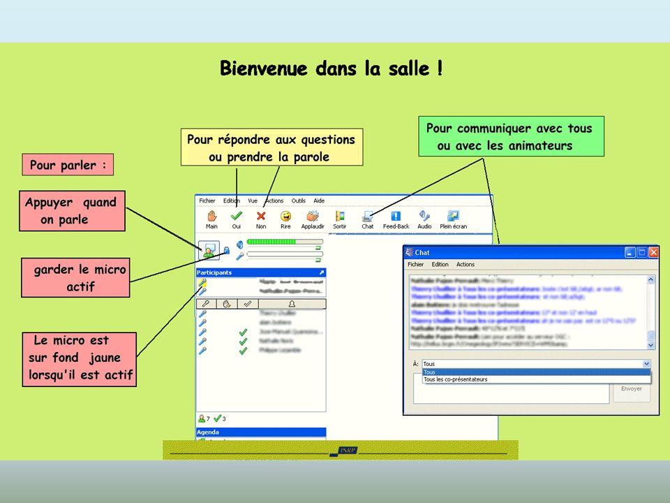 Utilisation CENTRA : Vérifier Son – Micro dans Outils Fenêtre de Chat 2