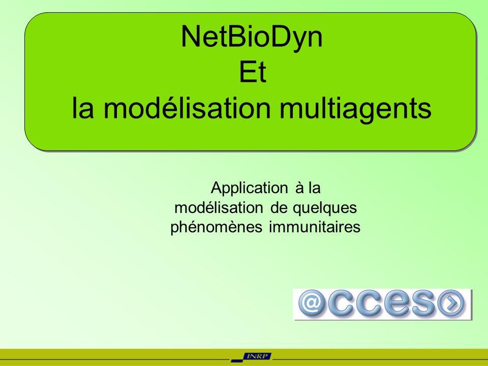 NetBioDyn Et la modélisation multiagents