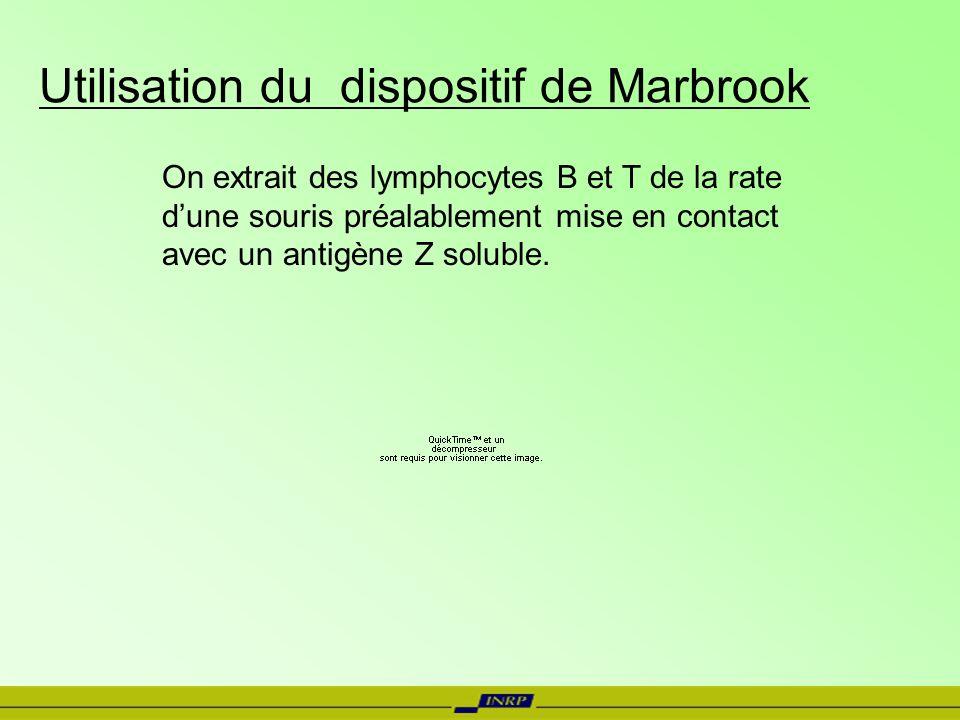 Utilisation du dispositif de Marbrook