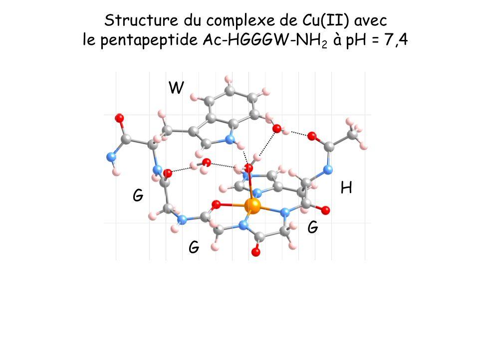 Structure du complexe de Cu(II) avec le pentapeptide Ac-HGGGW-NH2 à pH = 7,4