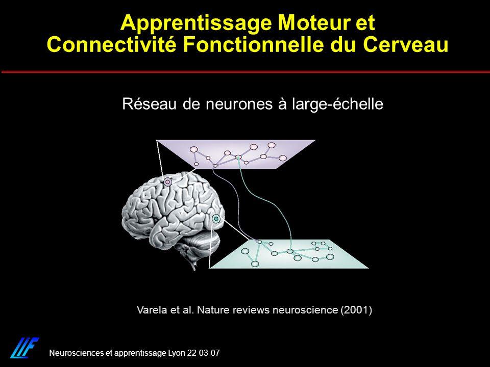 Apprentissage Moteur et Connectivité Fonctionnelle du Cerveau