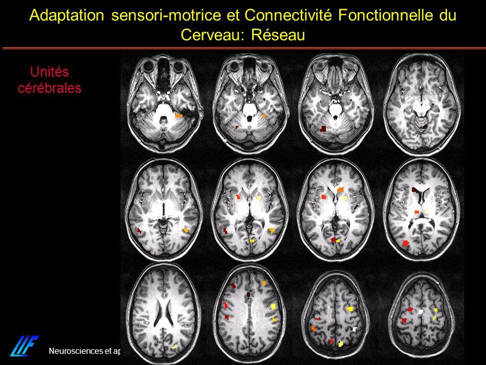 Adaptation sensori-motrice et Connectivité Fonctionnelle du Cerveau: Réseau