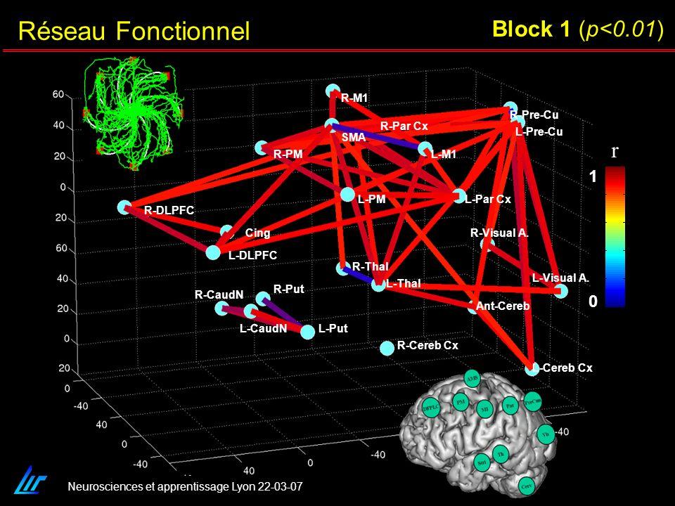 Réseau Fonctionnel Block 1 (p<0.01) r 1 R-M1 R-Pre-Cu R-Par Cx