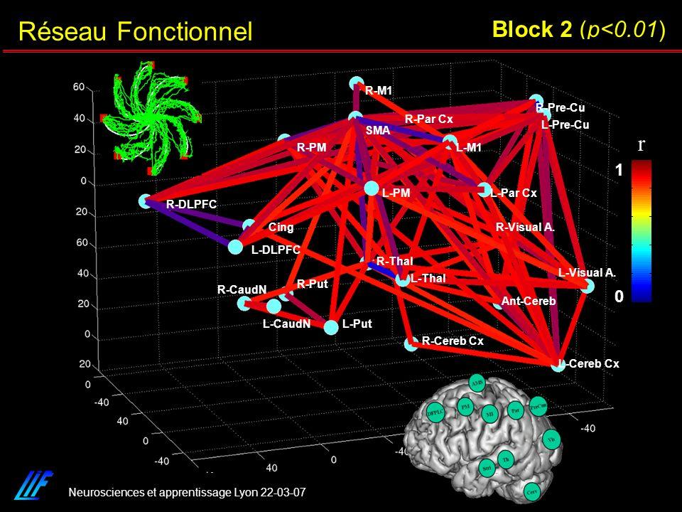 Réseau Fonctionnel Block 2 (p<0.01) r 1 L-Cereb Cx R-Cereb Cx