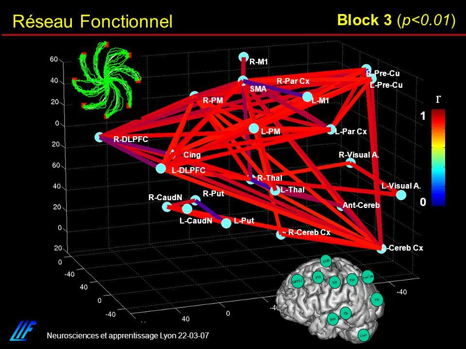 Réseau Fonctionnel Block 3 (p<0.01) r 1 R-M1 R-Pre-Cu R-Par Cx