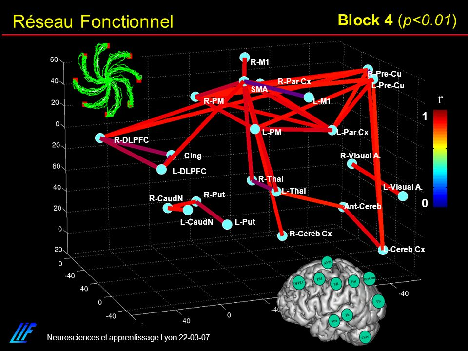 Réseau Fonctionnel Block 4 (p<0.01) r 1 R-Cereb Cx L-Cereb Cx