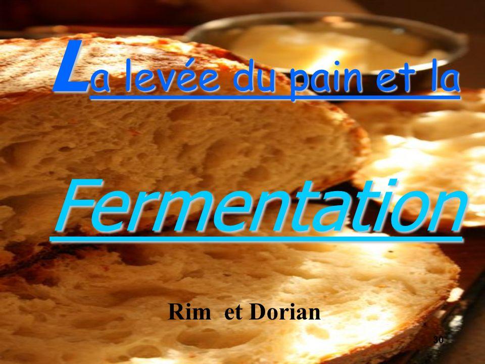 a levée du pain et la L Fermentation Rim et Dorian