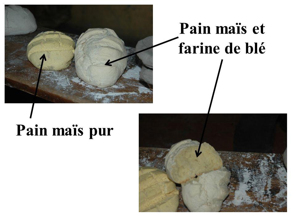 Pain maïs et farine de blé