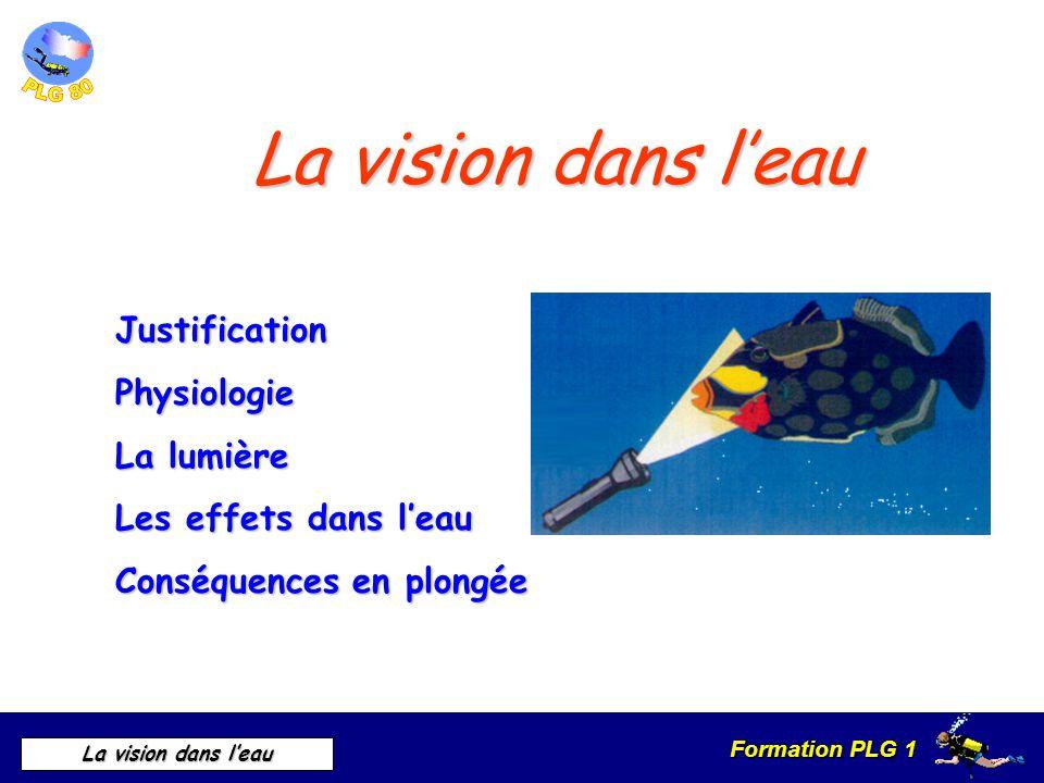 La vision dans l'eau Justification Physiologie La lumière