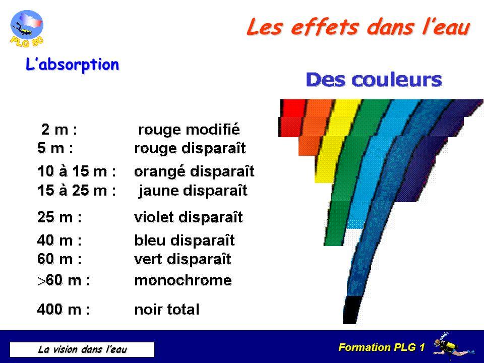 Les effets dans l'eau L'absorption