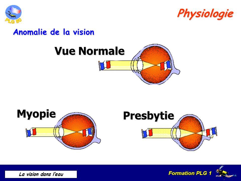 Physiologie Vue Normale Myopie Presbytie Anomalie de la vision