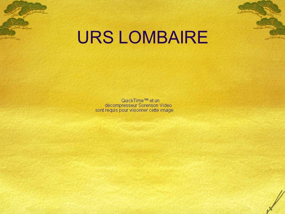 URS LOMBAIRE