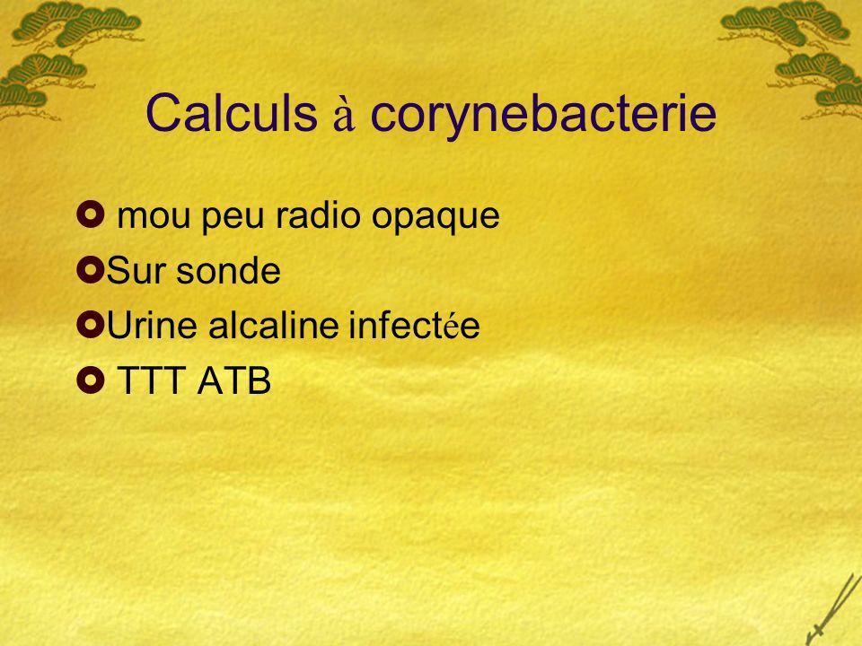 Calculs à corynebacterie