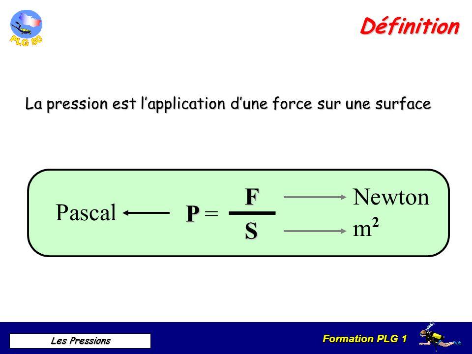 F P = S Newton P ascal m Définition
