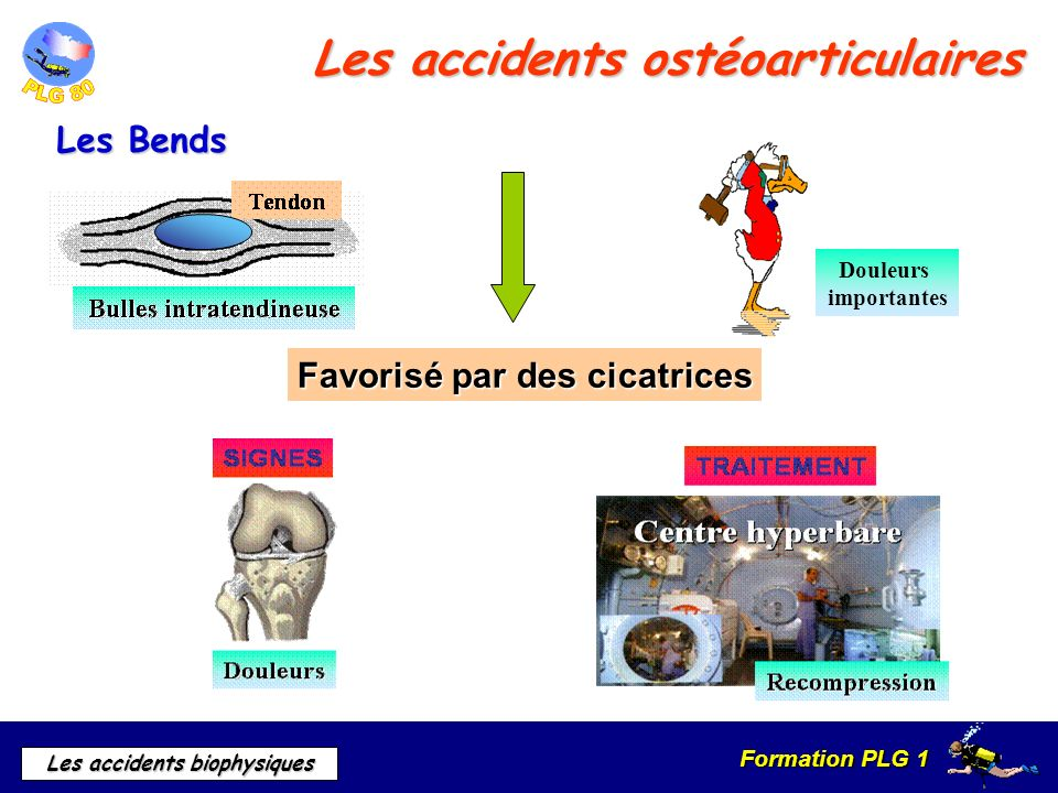 Les accidents ostéoarticulaires