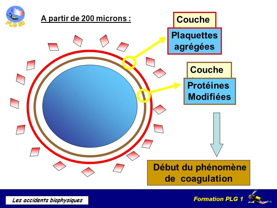 Accidents biophysiques ppt video online t l charger - Symptome d une fausse couche precoce ...