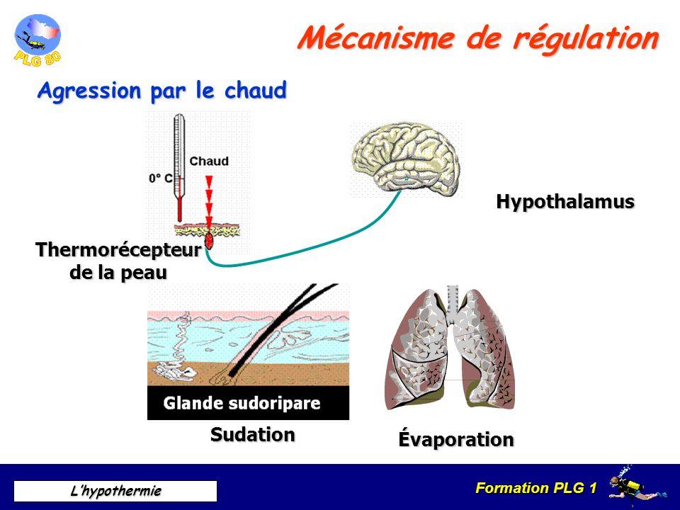 Mécanisme de régulation
