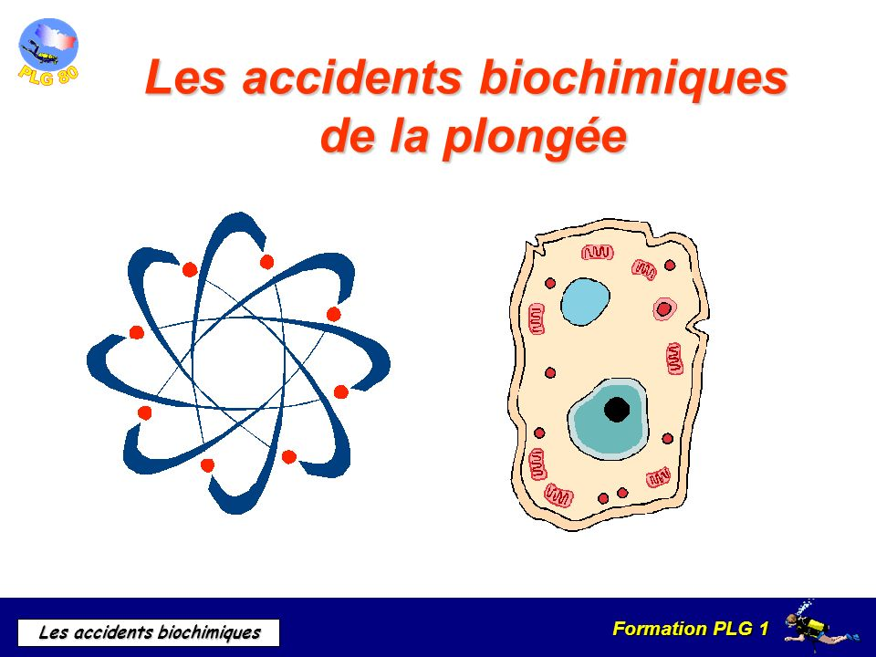 Les accidents biochimiques de la plongée