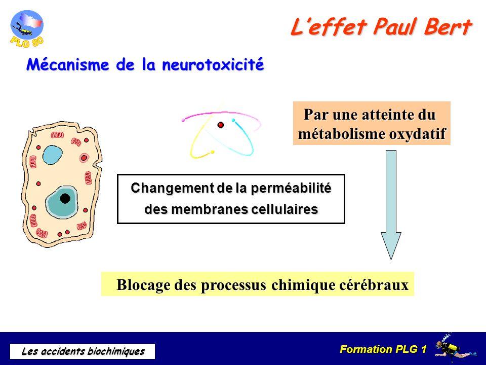 L'effet Paul Bert Mécanisme de la neurotoxicité