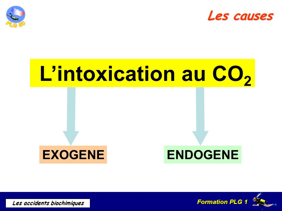 L'intoxication au CO2 Les causes EXOGENE ENDOGENE a) Causes
