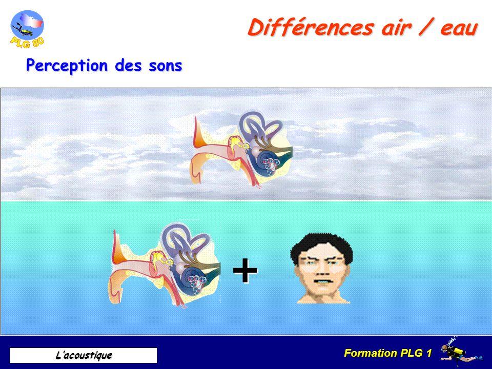 Différences air / eau Perception des sons