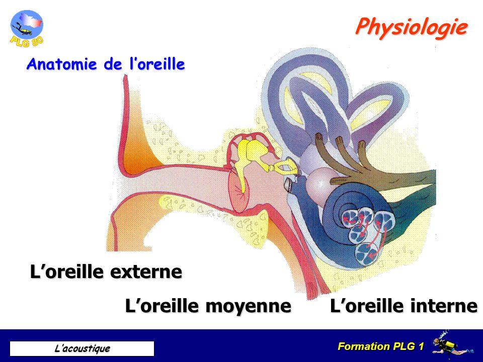 Physiologie L'oreille externe L'oreille moyenne L'oreille interne