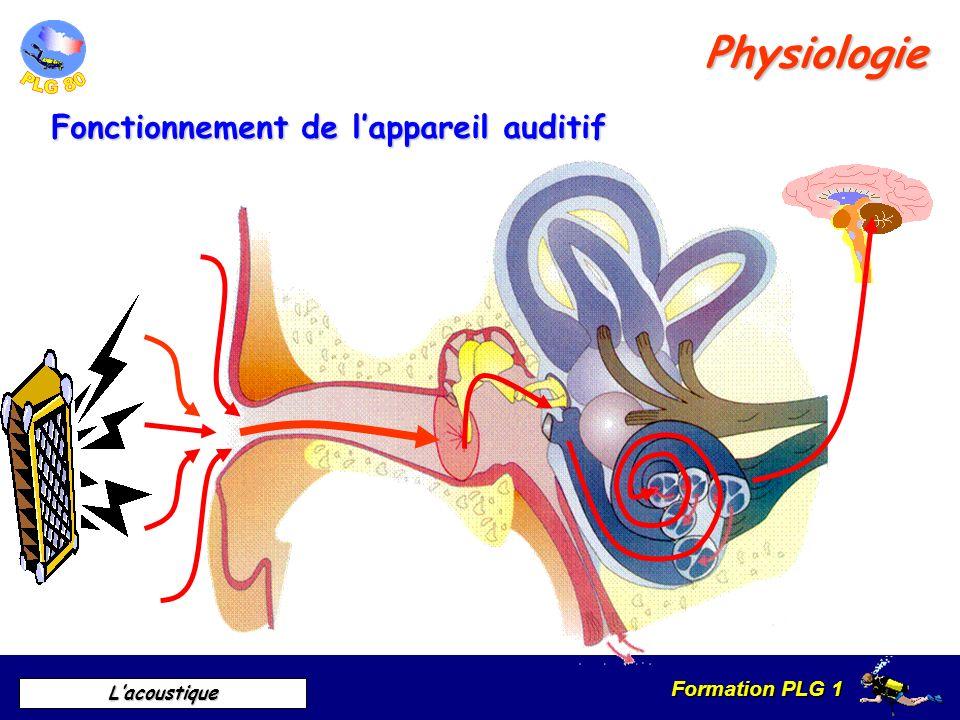 Physiologie Fonctionnement de l'appareil auditif