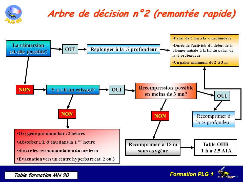Arbre de décision n°2 (remontée rapide)