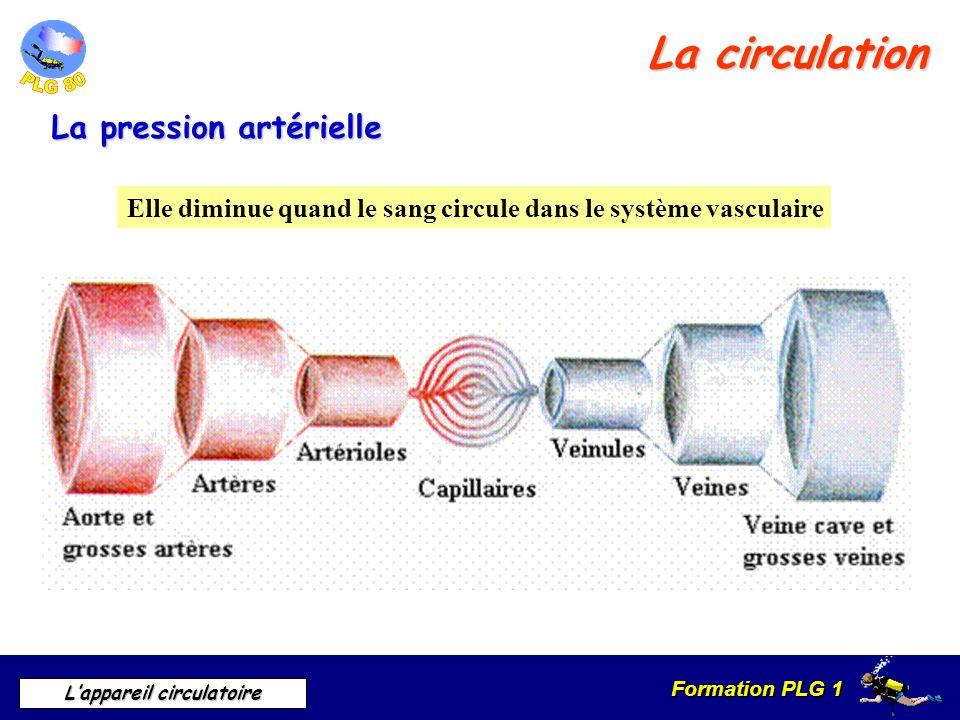 La circulation La pression artérielle