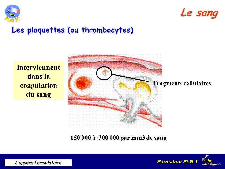 Interviennent dans la coagulation du sang