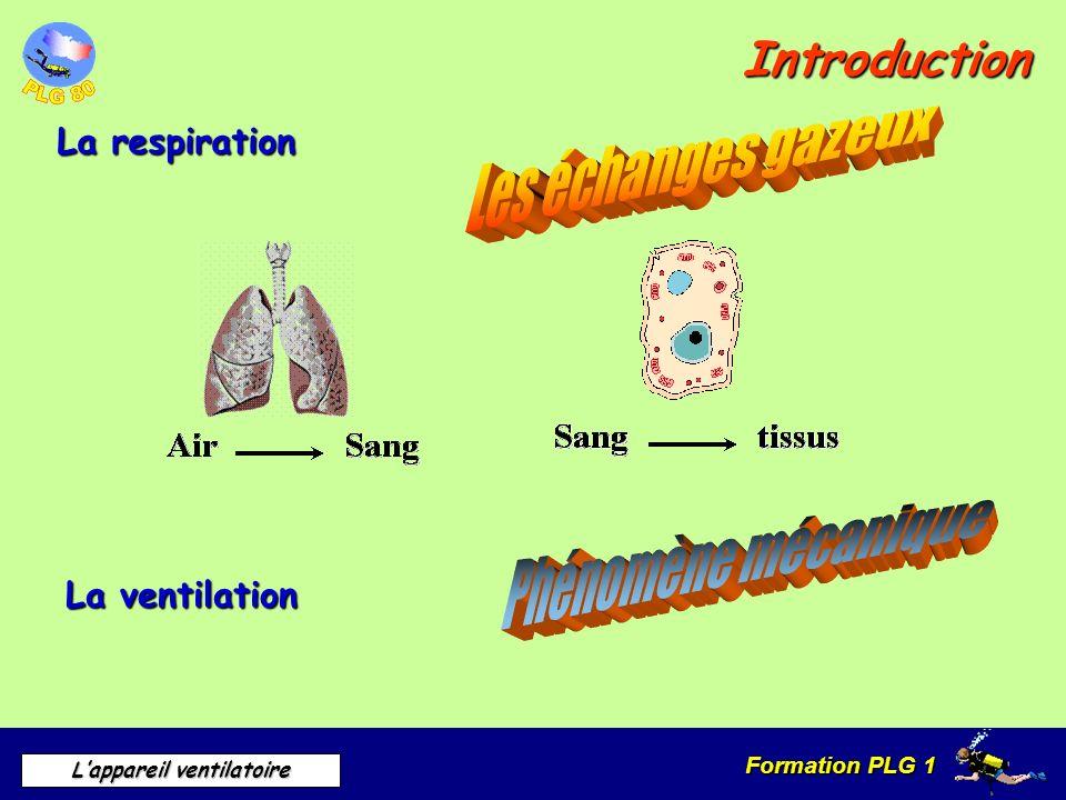 Phénomène mécanique Introduction La respiration La ventilation