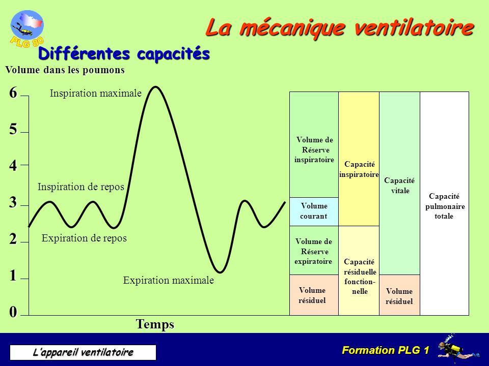La mécanique ventilatoire