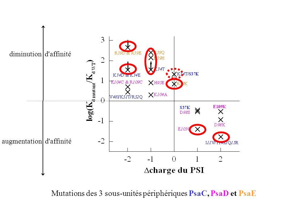 Mutations des 3 sous-unités périphériques PsaC, PsaD et PsaE