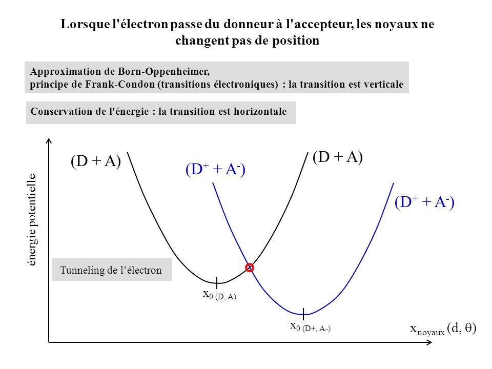 (D + A) (D + A) (D+ + A-) (D+ + A-)
