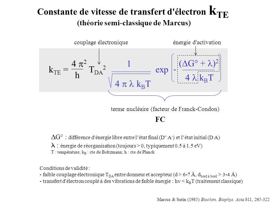 Constante de vitesse de transfert d électron kTE