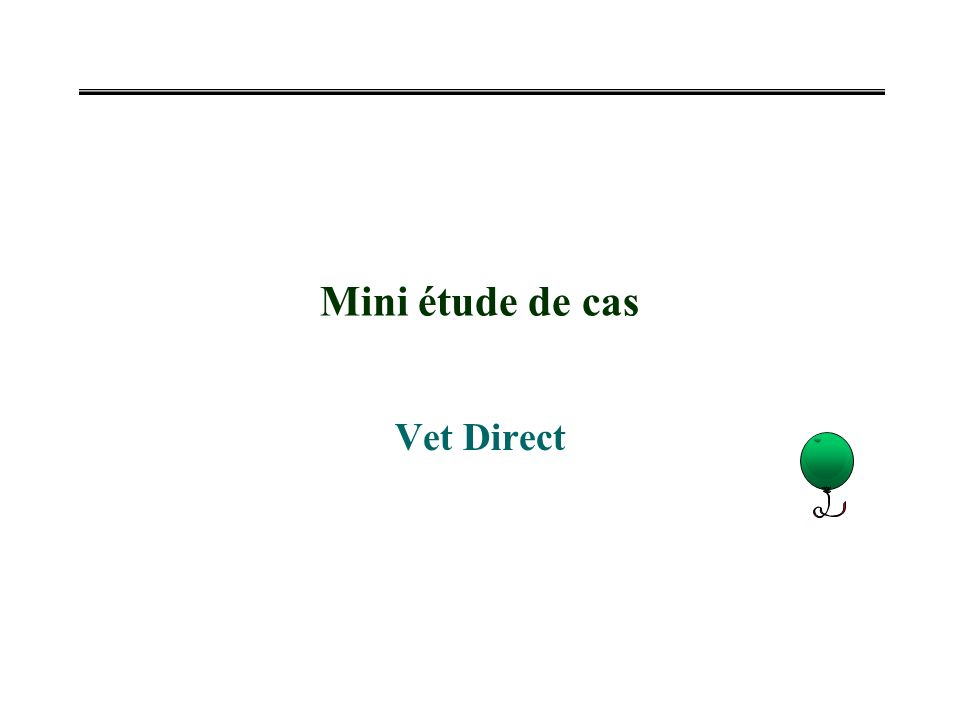 Mini étude de cas Vet Direct