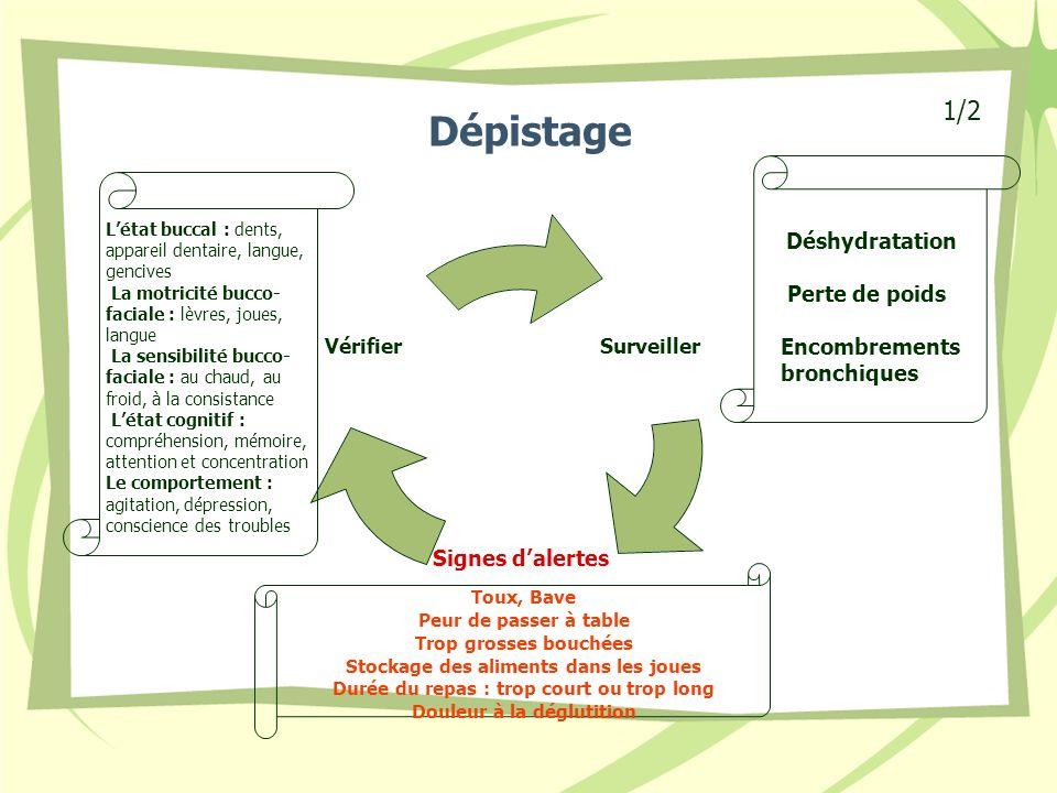 Dépistage 1/2 Perte de poids Encombrements bronchiques Déshydratation