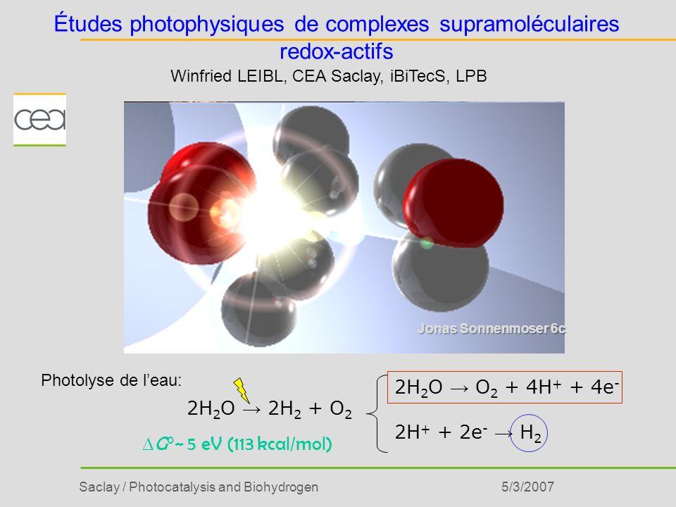 Études photophysiques de complexes supramoléculaires redox-actifs